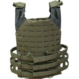 Back View Plate Carrier