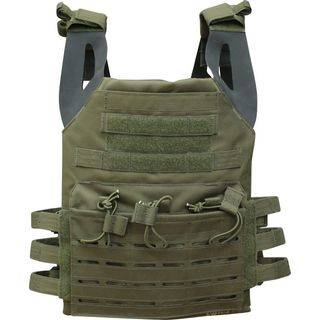 Front View Plate Carrier
