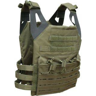 Side View Plate Carrier